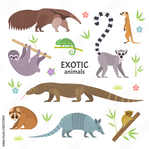 Egzotyczne zwierzęta. Ilustracji wektorowych z płaskich zwierząt, w tym mrówkojad, lemur z ogonami, lemur loris, lenistwo, jaszczurka monitor Komodo, pancernik, meerkat, tarsier, na białym tle.