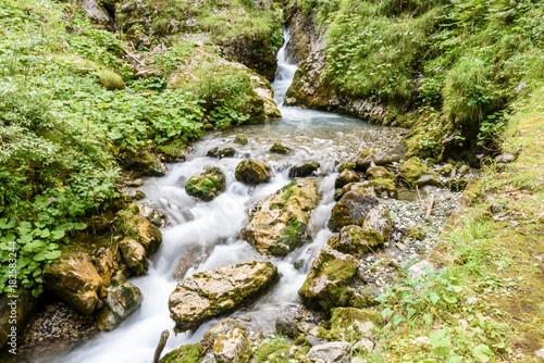 Fotobehang Natuur Flow