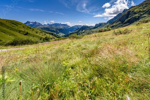 Fotobehang Pistache Dolomiten