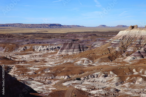 Staande foto Cappuccino badlands in petrified forest NP