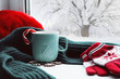 Winter background - cup with candy cane, woolen scarf and gloves on windowsill and winter scene outdoors