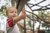 beautiful little boy smiling standing at fence with animals in the zoo stretching forwards hand - 182589002