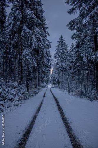 Wintereinbruch am Rennsteig