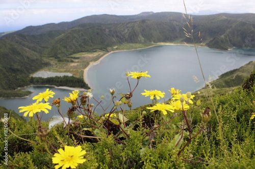 Aluminium Donkergrijs Lagoa do Fogo, Açores