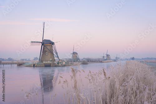Foto op Canvas Ochtendgloren Windmills in the Netherlands in the soft sunrise light in winter