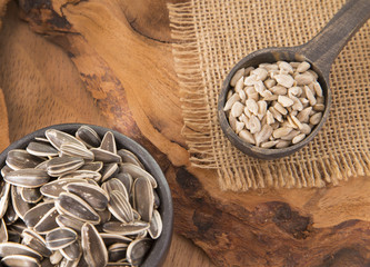 Sunflower seeds - Helianthus annuus