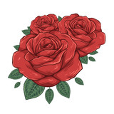 Buds of red roses. Vector illustration - 182620030