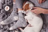 Cozy ,lazy day at home, cold weather, warm blanket. Dog sleeping on female feet. Relax, carefree, comfort lifestyle. - 182623854