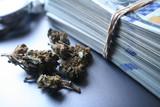 Marijuana Profits