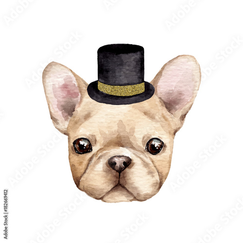 French dog with hat. Hand drawn cute watercolor illustration - 182669412