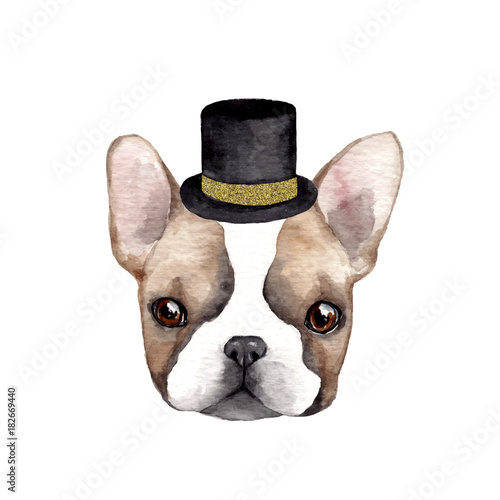 French dog with hat. Hand drawn cute watercolor illustration - 182669440