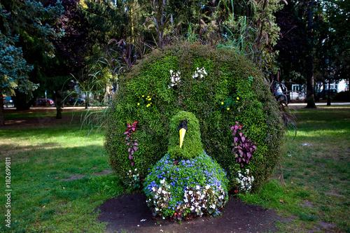 Aluminium Pauw Klomb kwiatowy w kształcie pawia, atrakcja turystyczna w Parku Zdrojowym, Ciechocinek, Polska