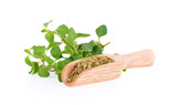 dried oregano and leaf on white background - 182703626