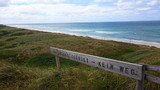 nature conservation area sylt - 182717644