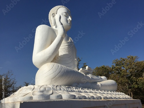 Staande foto Boeddha Bouddha blanc