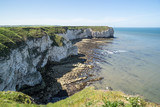 Flamborough, Yorkshire, UK. Chalk sea cliffs to the north of Flamborough Head. - 182718630