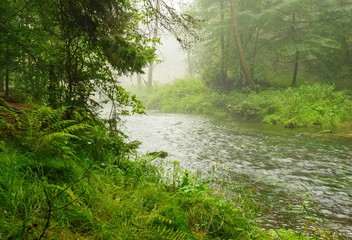 River in rain and fog