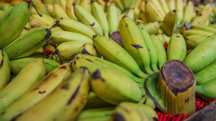 Thailand Banana