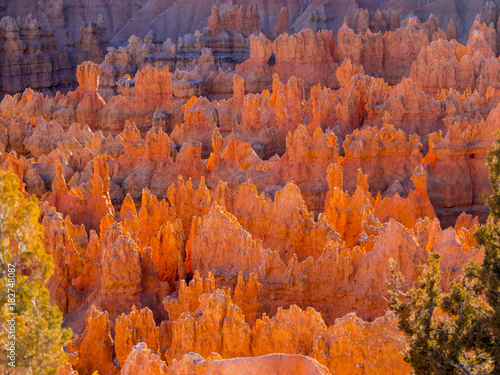Poster Baksteen Must see places in the USA - the amazing Bryce Canyon National Park