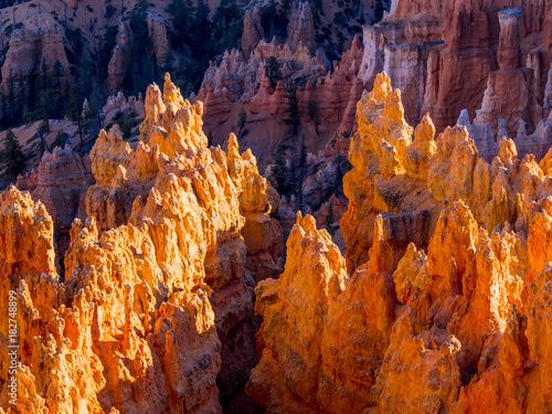 Foto op Plexiglas Rood traf. The famous Bryce Canyon National Park in Utah