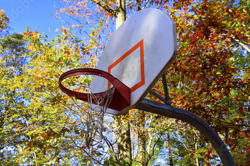 Fotobehang Basketbal Basketball backblard outdoors with colorful autumn leaves and blue sky in background