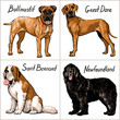 Set of dogs. Vector illustration.