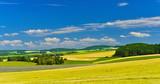Summer fields - 182779890