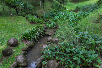variety of plants in botanical garden of Kuala Lumpur in Malaysia
