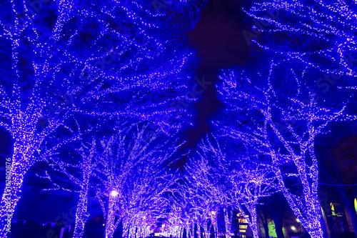 Staande foto Violet クリスマスイルミネーション
