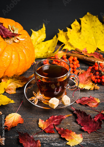 Fototapeta Cup of tea on the rustic background with autumn decoration. Selective focus. Shallow depth of field.