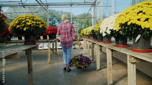 Rear view: A woman goes to a flower shop, carries a flower pot and talks on the phone. Purchase of flowers concept