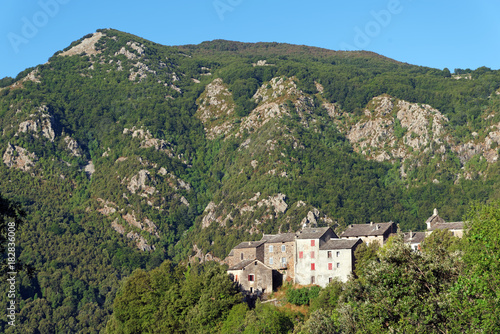 Plexiglas Khaki Campodonico village in upper Corsica mountain