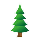 christmas tree isolated icon vector illustration design - 182844666