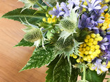 part of a summer bouquet with helichrysum,thystle and, agapanthus - 182849260
