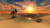 oasis, beautiful sunset in the desert, the sun above the sand and palm trees  - 182858624