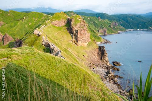 Fotobehang Pistache 積丹半島、神威岬の夕暮れ前の夏風景、リアス式海岸、緑の低木と厳しい崖