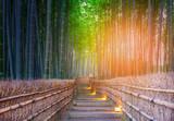 Path to bamboo forest at Arashiyama, Kyoto, Japan.