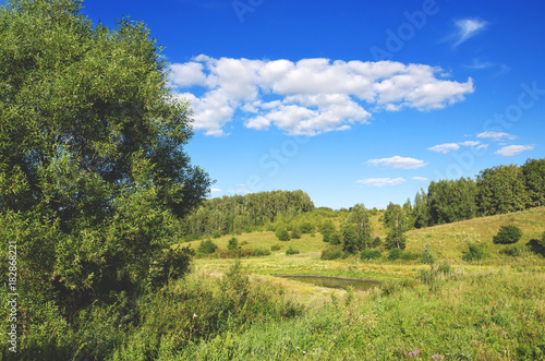 Plexiglas Lente Sunny landscape with trees growing on the hills