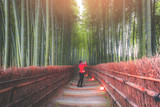 Path to bamboo forest at kyoto,Japan.