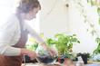 Hobby. A woman creates a mini terrarium with plants for interior design