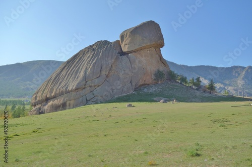 Foto op Canvas Pistache Turtle Rock, a landmark rock formation in the Gorkhi-Terelj National Park in Mongolia