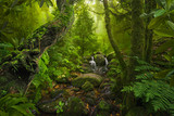 Asian rainforest jungle - 182968601