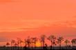 Sunrise in Punta Gorda Florida
