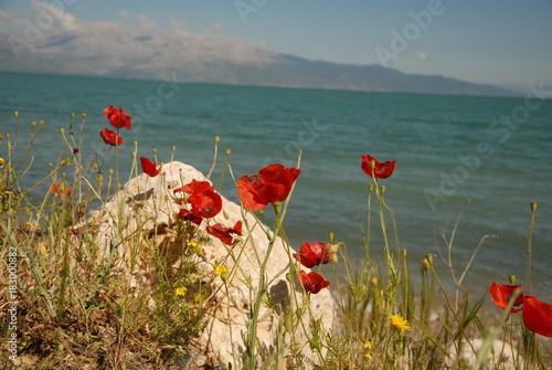 Keuken foto achterwand Klaprozen Doğa Yazılı Eğirdir Gölü