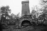 tour de Samois et forêt de fontainebleau en noir et blanc - 183001870