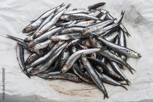 Fototapeta Pile of fresh anchovies in opened paper wrap