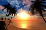 beautiful sea sunset on the beach with palm trees