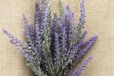 Lavender flower on purple wooden background. - 183006211