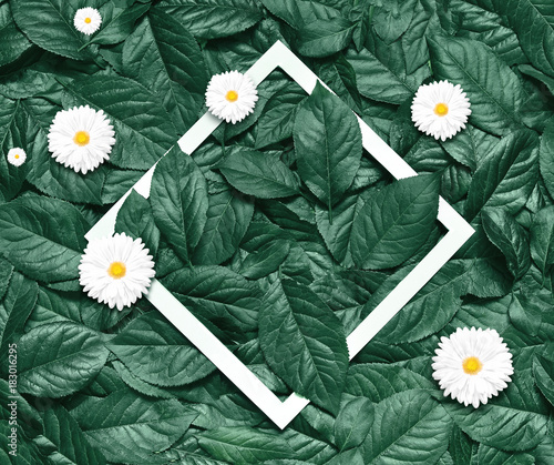 Foto op Canvas Natuur Creative layout made of flowers and leaves with paper frame. Flat lay. Eco nature concept