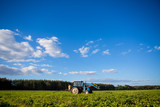 Agrikultura tractor cultivates the soil on the field - 183024410